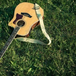 Acoustic Guitar In The Grass