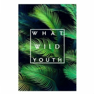 What Wild Youth