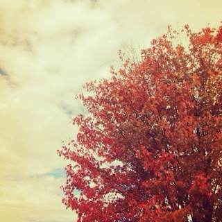 Autumn Playlist Vol. III