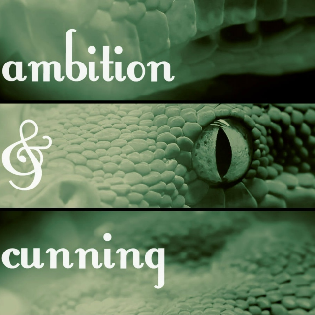 ambition & cunning