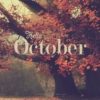 Favorites of October 2013