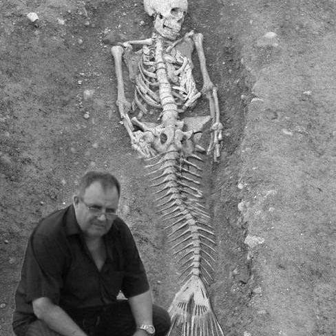 mermaids like to party.
