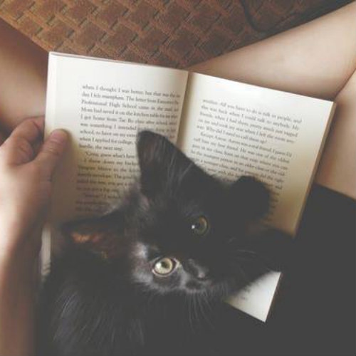 † reading makes me peaceful †