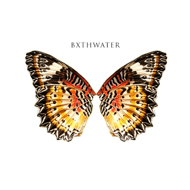 Fanmix Yourself: Part II - Bxthwater