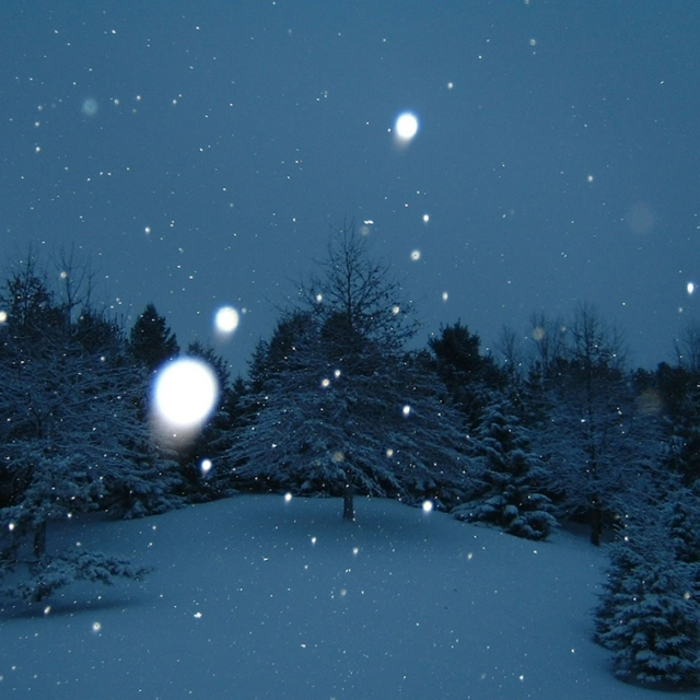 I sing a winter song to you