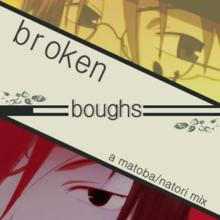 broken boughs