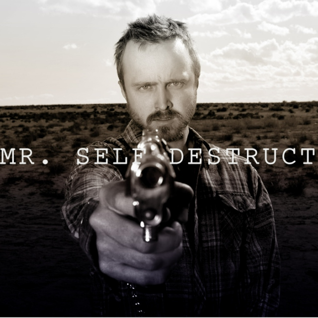 mr. self destruct