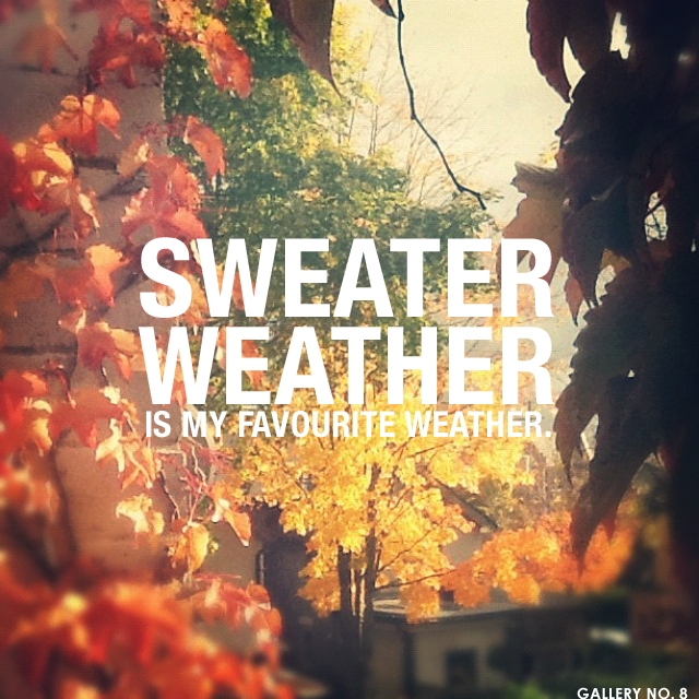Sweater Weather Is My Favorite Weather