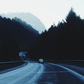 Driving Through The Forest