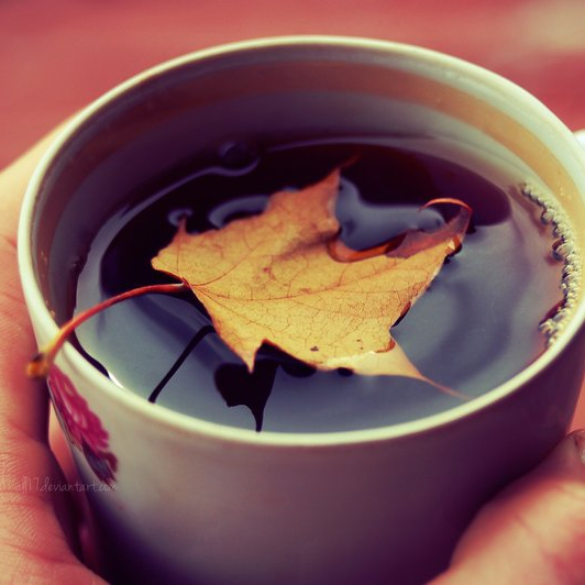 Autumn Leaves and Cups of Tea