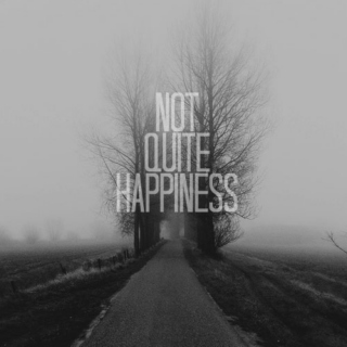 Not Quite Happiness