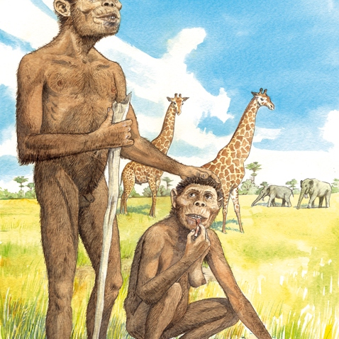 australopithecus friend to the end but its over over over again