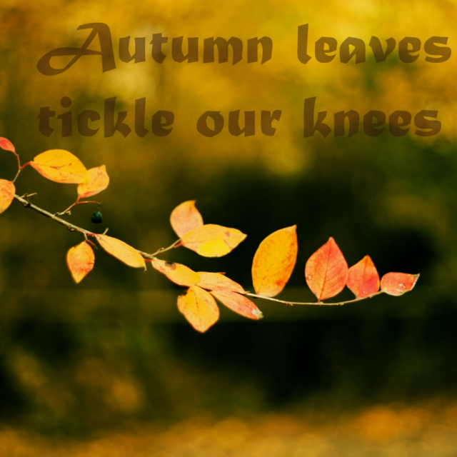 Autumn Leaves Tickle Our Knees