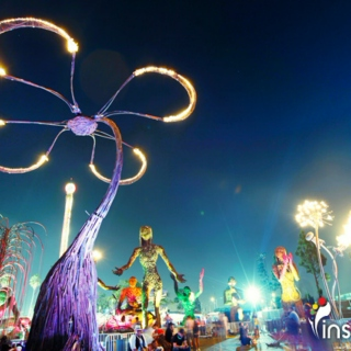 Electric Daisy Carnival 2011 sampler