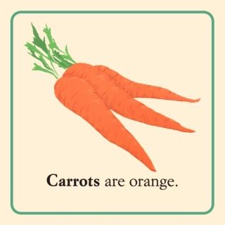 Carrots are orange.