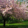 Spring 2012 - personal soundtrack