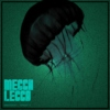 Mecca Lecca Monthly Mixtape April 2011