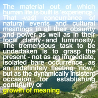 growth of meaning