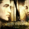 The Best Of: New Moon OST