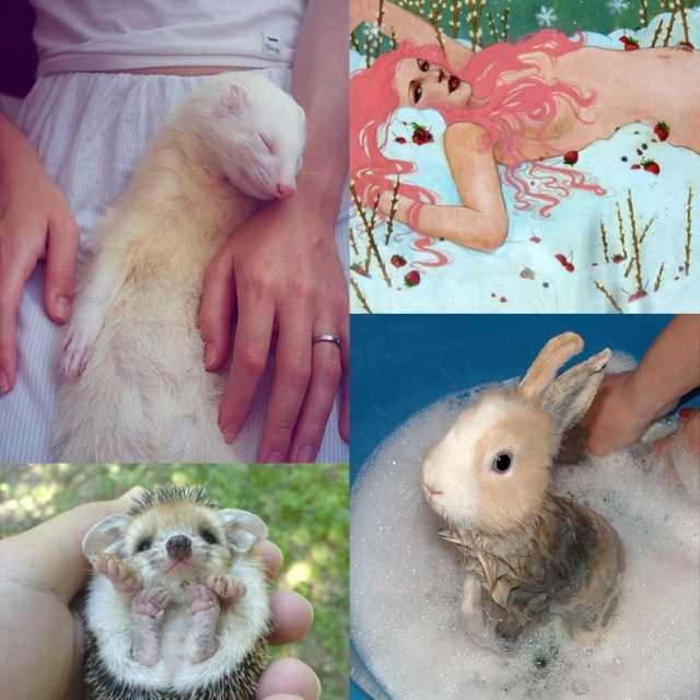 Cute Overload -or- Wet Bunnies & Other Fun Projects