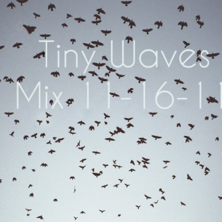 tiny waves' 11-16-11 mix