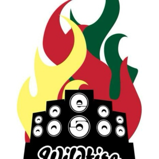 Wildfire Reggae & Arts Fest 2012 (Mix)
