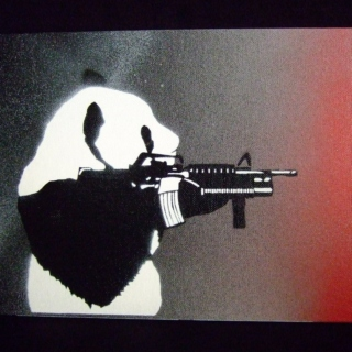 Panda shoot you