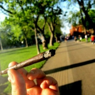 smoke that grass on the way to class