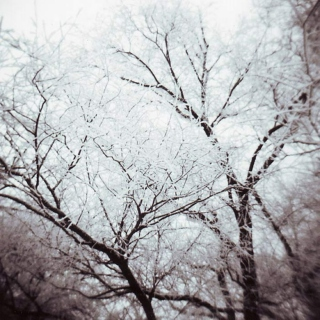 lonesome winters