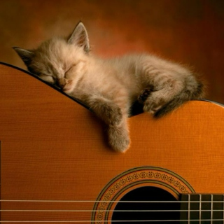 Drifting Off. Just...one...more... song...