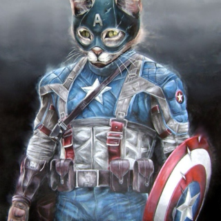"Captain ""Cat"" of America"