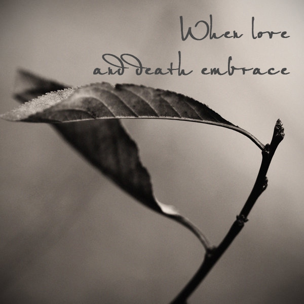 When love and death embrace