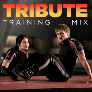 Tribute Training Mix