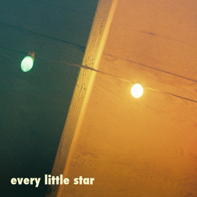 Every Little Star