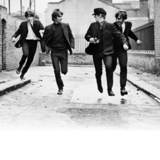 Beatle Like You