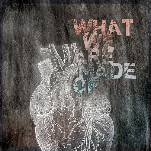 what we are made of