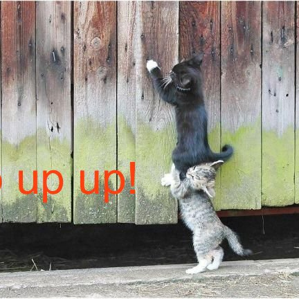 Get Your Life UP UP UP