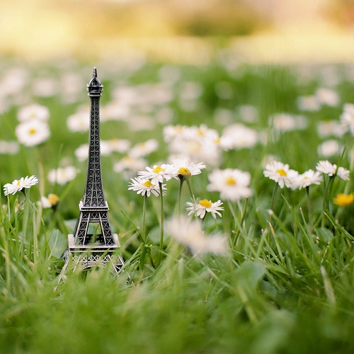I love Paris in the springtime
