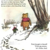 The Pooh Perplex (just because i read it)