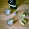 music for mixing up gin & tonics (spring 2010)
