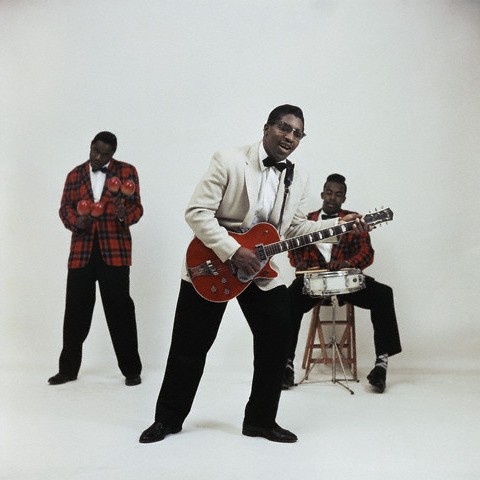 Hail Bo Diddley - a tribute
