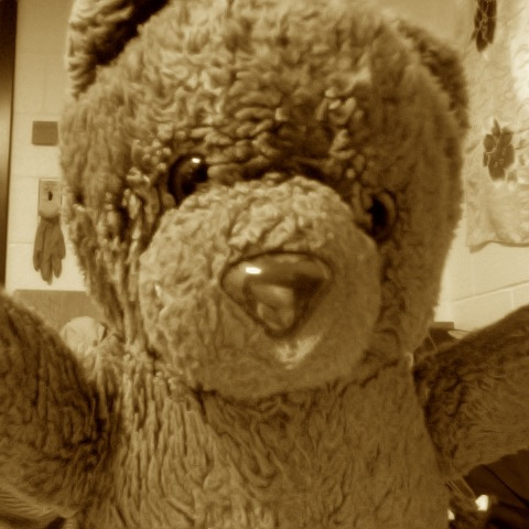 So Angry I Punched My Teddy Bear
