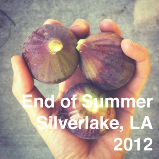 End of Summer 2012