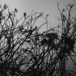 Fingers Twirling Through My Hair: A Mix To Fall Asleep To