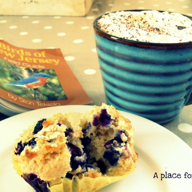 Hot Chocolate & a Blueberry Muffin.