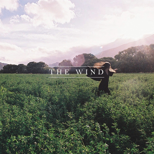 the wind.
