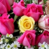barbaragallo's Flowers mix
