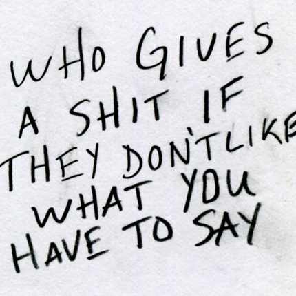 Who Gives A $hit If They Don't Like What You Have To Say