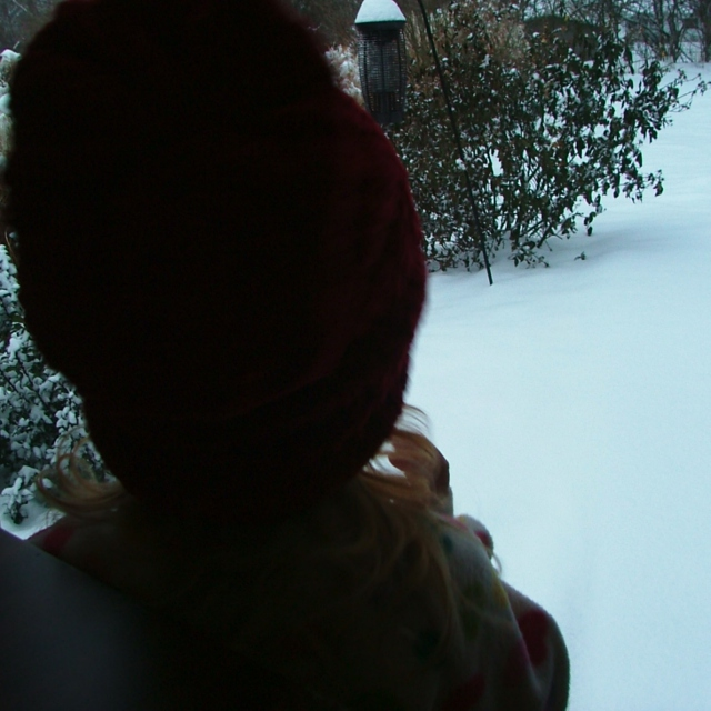 Cold Cacophany : a mix for the impending pseudo-blizzard of January 2010