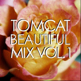 TomCat Beautiful Mix, Volume 1